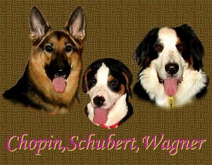 Chopin&Wagner&Schubert(High) 3.jpg