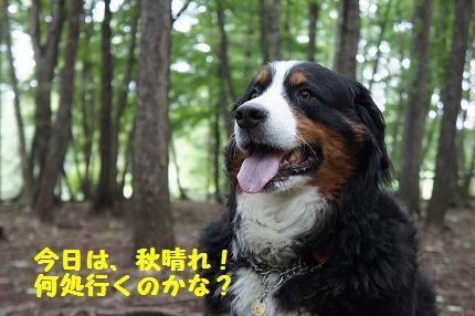 akihare.jpg