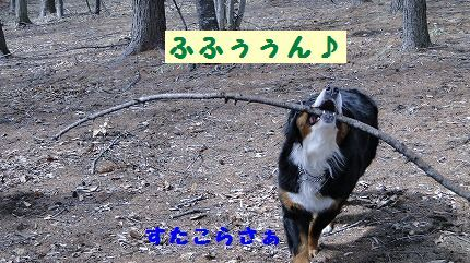 fufufun.jpg