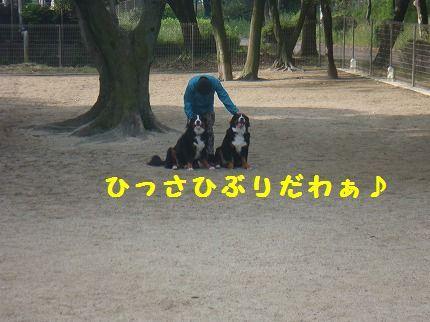 hisashi.jpg