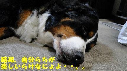 kekyoku.jpg