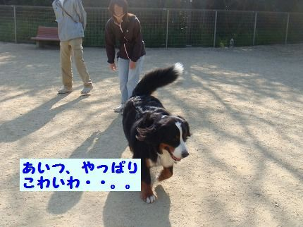 kowaiwa.jpg
