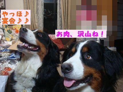 onikuta.jpg