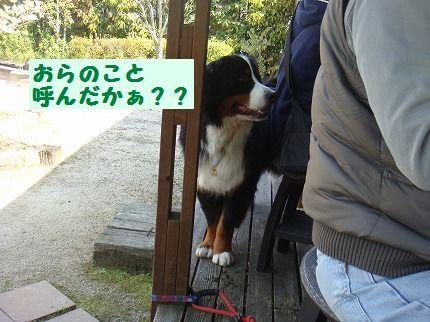 orayobu8.jpg