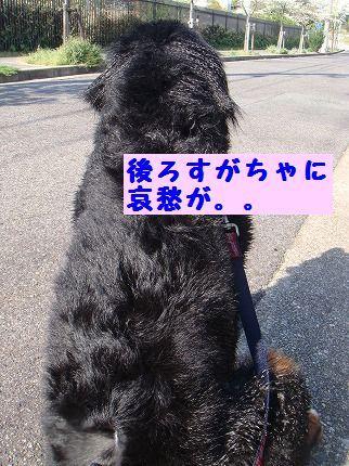 ushirosu.jpg