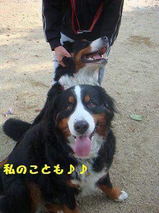 watashino.jpg